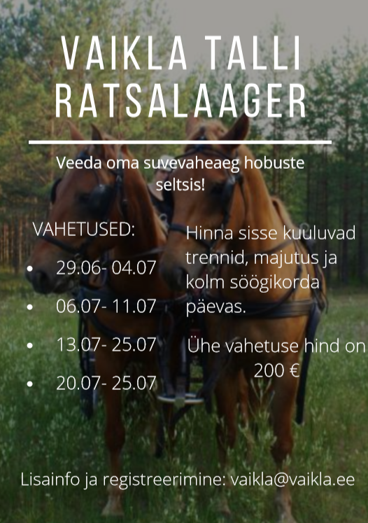 Ratsalaager (2)